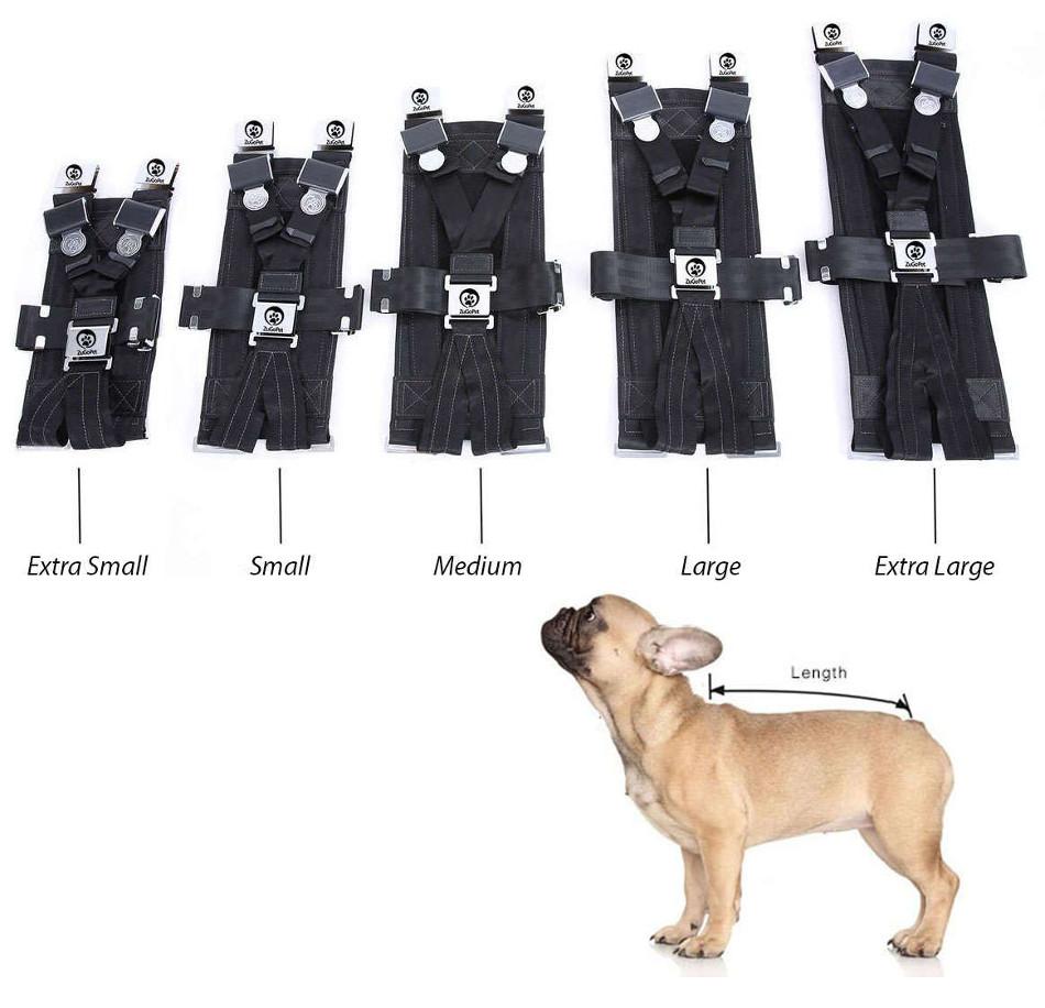 El Rocketeer Pack, cinturón de seguridad para los caninos de la casa